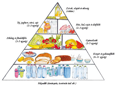 táplálék magas vérnyomás esetén 2 fok